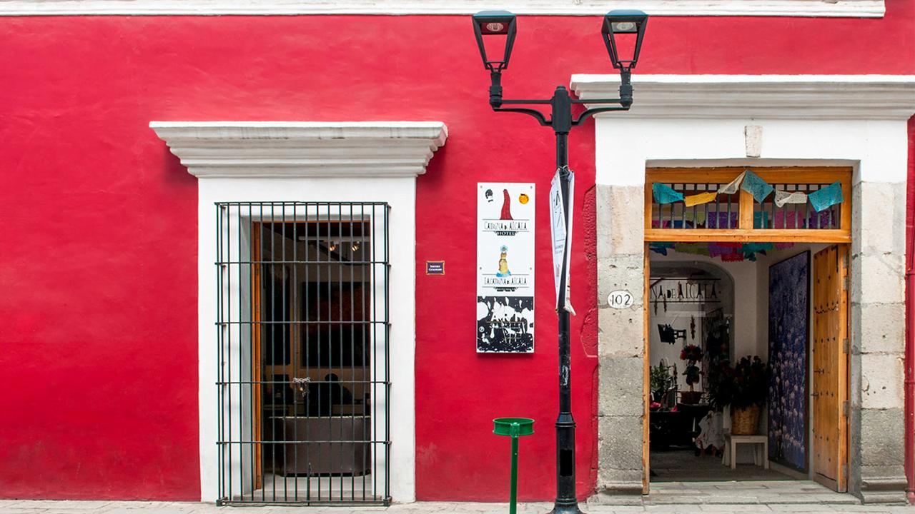 Imagen 4 proyecto Catrina de Alcalá